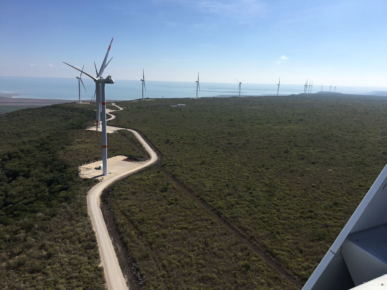 Parques Eólicos Ciudad Victoria & La Mesa