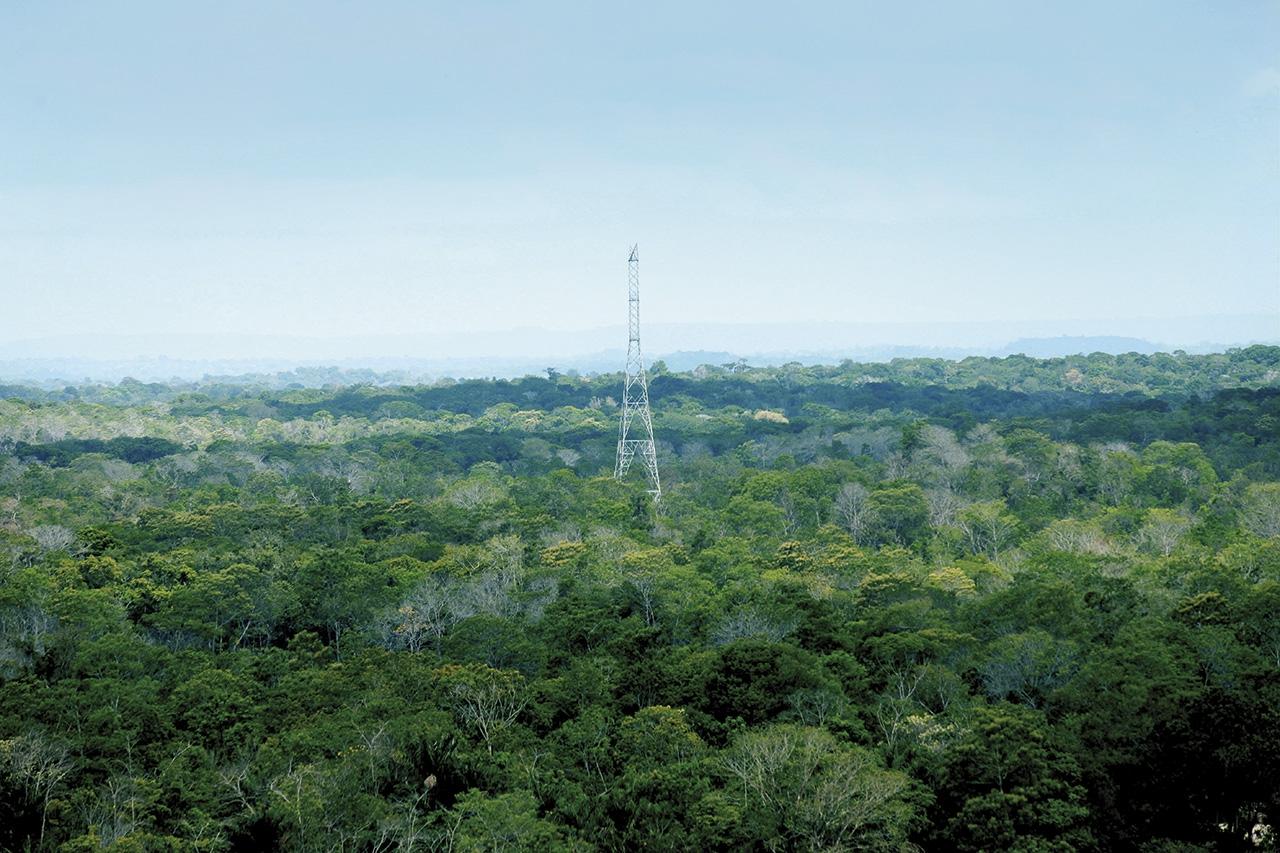 Proyecto Xingu
